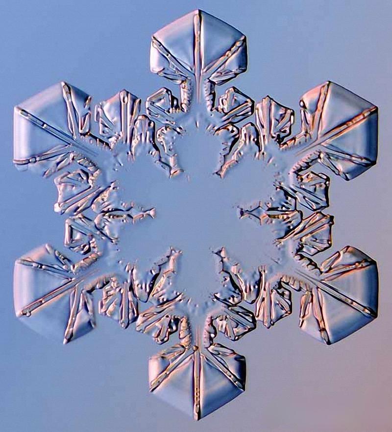 картинки форм снежинок существенно меняет вкусовые
